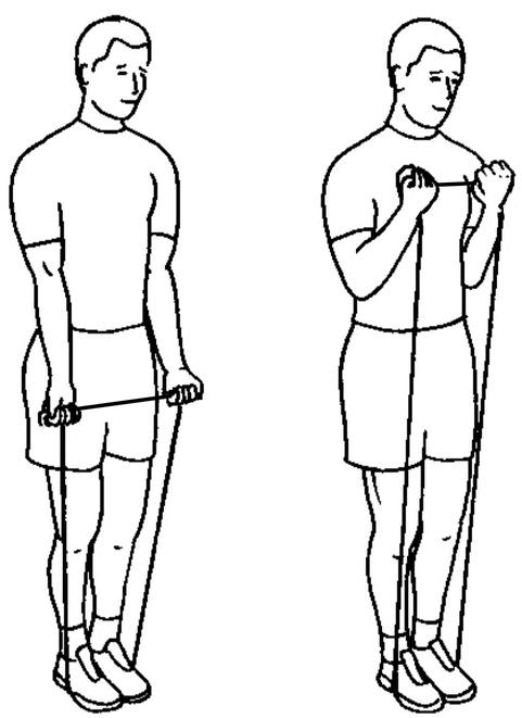 Stående bicepscurl med gummiband