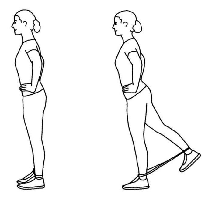 träning för ben